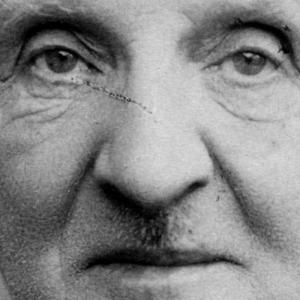 Conoscere Bruckner II